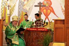 Ordination-8